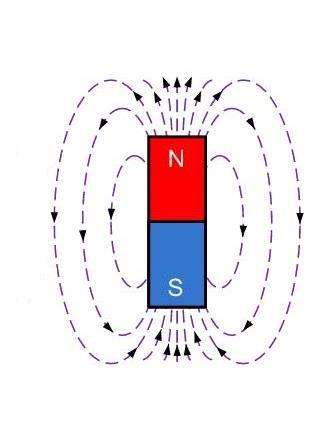 линии магнитного поля