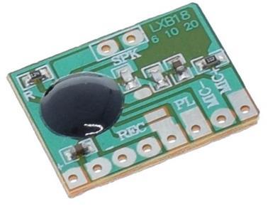 звукозаписывающий чип